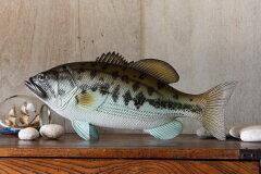飾りやすい魚の置物ブラックバス(樹脂製/大サイズ) 約45cm 約320g 【楽ギフ_包装】【楽ギフ_メ...