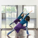 鏡 全身 ダンス ミラー 全身鏡 キャス