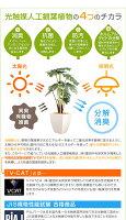 観葉植物光触媒造花ユーカリグリーン人工植物消臭抗菌防菌ホルムアルデヒド植物人工タバコペットアートフラワー%OFFモダンシンプル北欧