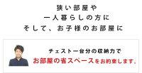 【セミダブル】Terra日本製五杯収納ベッドホワイト【オリジナルポケットコイル】