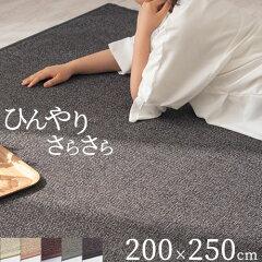 ラグ ラグマット オールシーズン 竹竹ラグカーペット カグヤ〔200×250cm〕 シンプル 【送料無...