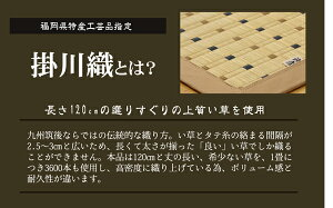 モダン掛川織い草カーペット【TD】