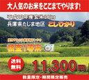 地元価格でお届けします兵庫県たじまコシヒカリ玄米30kg【送料無料】【こしひかり】【精米料無料】【あす楽対応】