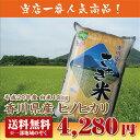 【29年産新米】【送料無料】香川県産ヒノヒカリ白米10kg【ひのひかり】