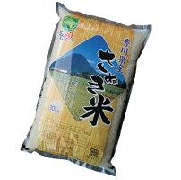 【送料無料】香川県産ヒノヒカリ白米10kg【ひのひかり】
