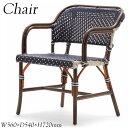 アームチェア AP-0094 ラウンジチェア 椅子 ダイニングチェア カフェチェア テラスチェア ガーデンチェア ポリエチレン アルミ