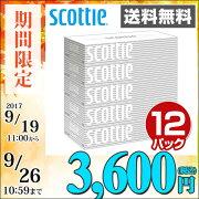 日本製紙クレシアスコッティ(SCOTTIE)ティッシュペーパー200組5箱×12パック(60箱)41735