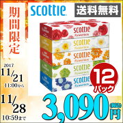 日本製紙クレシアスコッティ(SCOTTIE)ティッシュペーパーフラワーボックス320枚(160組)5箱×12パック(60箱)41270