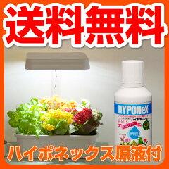 お部屋でガーデニング!液体肥料ハイポネックス付LEDプランター お部屋畑 家庭菜園セット 送...