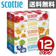 日本製紙 クレシア スコッティ ティッシュペーパー フラワー ボックス ティシュ ペーパー まとめ買い ティッシュ