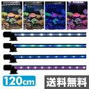 ゼンスイ アンダーウォーターLEDスリム 120cm 水槽用照明 LEDライト 鑑賞魚 熱帯魚 アクアリウム アクセサリー 【送料無料】