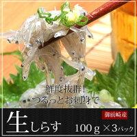 生しらす静岡県鮮度抜群ランキング人気