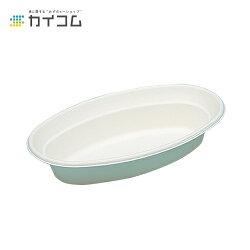 P017カレー皿