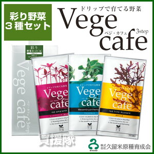 ドリップで育てる野菜!Vege cafe 彩り野菜 3種セットA 【vege cafe ベジカフェ 野菜 ハーブ キ...