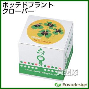 ベランダガーデニングにおすすめ!エコな栽培キットラッシュ Euvo Design Potted Plant オキザ...