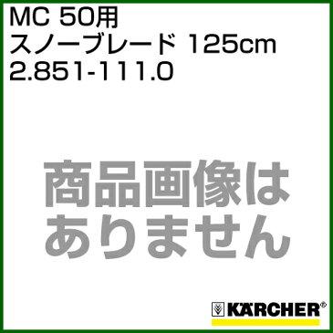 ケルヒャー MC 50用 オプションパーツ スノーブレード 125cm 2.851-111.0 【ポイント10倍】【スウィーパー アクセサリー スイーパー karcher 掃除 業務用 オプション 部品 アタッチメント】【おしゃれ おすすめ】[CB99]