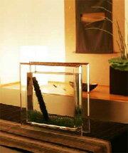 水魚、砂利が選べる初心者入門★スタイリッシュなインテリア水槽小さなアクアリウムセット 「レ...