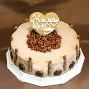 ハッピーバースディーチョコレートアイスケーキ