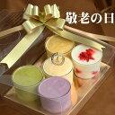 ギフトプレゼント お菓子 アイスクリーム5個入りセット カッ