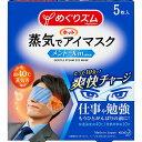 【あわせ買い2999円以上で送料無料】花王 めぐりズム 蒸気