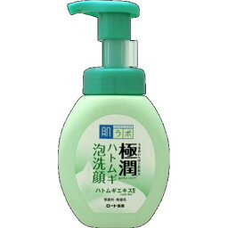 【あわせ買い2999円以上で送料無料】ロート製薬 肌研 極潤 ハトムギ泡洗顔 160ml