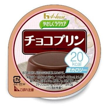 やさしくラクケア 20kcal チョコプリン / 86892 60g