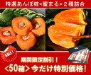 【お買得価格!】蜜のように甘くてトロ?り!【特選あんぽ柿 蜜まる】2種詰め合わせ ※2箱以上送料無料