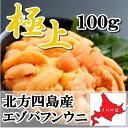 【極上グレード】無添加 最高級 塩水うに100g北方四島産 エゾバフンウニ 北海道うに丼