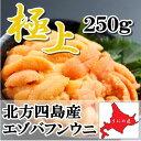 【極上グレード】無添加 最高級 塩水うに250g北方四島産 エゾバフンウニ 北海道うに丼