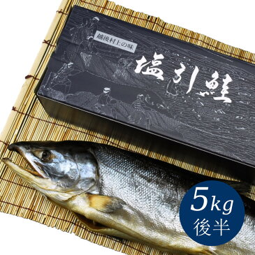 新潟 村上 名産 塩引鮭(塩引き鮭)一尾物5kg後半 塩鮭 サケ シャケ しゃけ