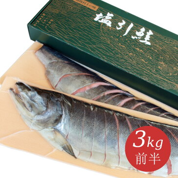 新潟 村上 名産 塩引鮭(塩引き鮭)切身姿造り3kg前半 塩鮭 サケ シャケ しゃけ