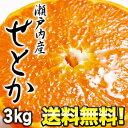 柑橘/みかん/せとか/送料無料【3月17日出荷開始】瀬戸内産 せとか約3kg[9~18玉]2箱[6kg]ま...