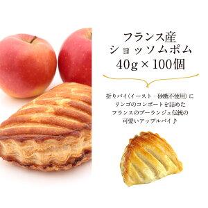 フランス産冷凍パンアウトレットセール[パンオショコラ80個・ショッソムポム100個]選り取り[賞味期限:2021年9月12日]【2〜3営業日以内に出荷】【送料無料】[冷凍][同梱不可]