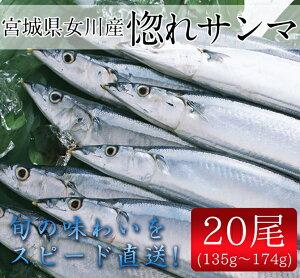 生サンマ20尾セット(135g〜17...