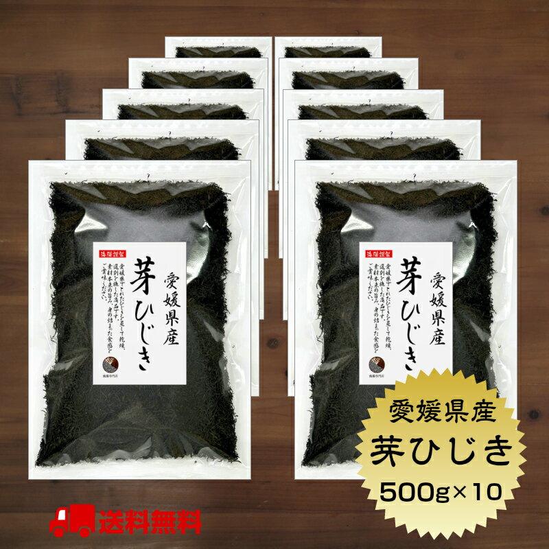 ひじき 愛媛県産 芽ひじき 500g × 10セット 国産愛媛県 産地から原料を買付け自社製造で仕上げた一品 業務用