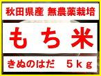 [新米][26年秋田県産][無農薬][きぬのはだ]安心で美味しいもち米5kg