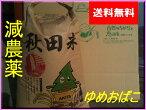 [送料無料][減農薬]安心で美味しいゆめおばこ30g