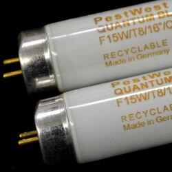 エプシロンエコクォンタムランプ15W 2本 捕虫器用ランプ 【送料無料】