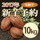 安納芋 10kg【等級/A品】鹿児島県産 蜜芋 安納 さつまいも 送料無料 紅はるかもあります。