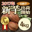 種子島産 安納芋 4kg  種子島産 蜜芋 さつまいも 産地...