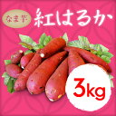 出荷開始 新芋有機肥料 紅はるか 生芋3kg            【等級/A品】鹿児島県産 蜜芋 甘いも さつまいも 産地直送 送料無料 安納芋もあります。