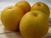 和梨(なし) 豊水梨 5個入り 濃厚な甘さとシャキシャキとした食感が絶品! 10P03Sep16