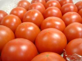 野菜・きのこ, トマト  2kg 52 1 2