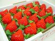 徳島県佐那河内村産 さくらももいちご 20粒入り 市場へ出荷されて間もない苺の新品種!甘さ抜群でとっても食味が良いイチゴの逸品! お年賀におすすめ! 発送:1月中旬〜2月上旬の間