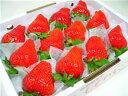 徳島県佐那河内村産さくらももいちご 12粒入り 市場へ出荷されて間もない苺の新品種!甘さ抜群でとって ...