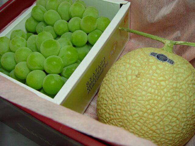 フルーツ・果物, メロン  1 6