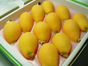 【送料無料】長崎県産・温室栽培びわ 茂木びわ 12粒入り (化粧箱入り) 年に一度は食べたい温室ビワの逸品! 母の日ギフトにおすすめ