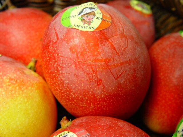 【送料無料】メキシコ産アップルマンゴー 2個入り トロピカル・フルーツの逸品! *北海道、沖縄への発送には送料別途972円 お中元におすすめ 遅れてごめんね!父の日ギフト・黄色いバラ1本付き 6月19日?6月24日の間到着