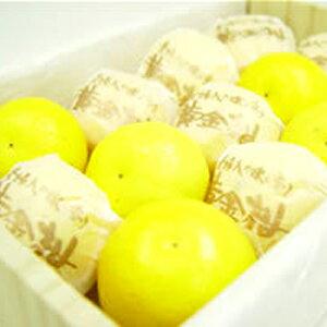 フルーツ・果物, みかん  ()
