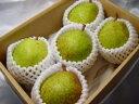 西洋梨の本場で育た洋梨の人気品種ラ・フランス!甘くてとろける食感のラフランスは一度食べる...